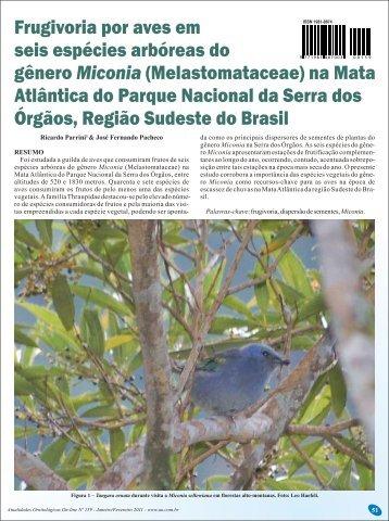 Melastomataceae - Atualidades Ornitológicas
