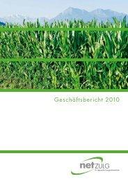 Geschäftsbericht 2010 - NetZulg AG