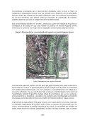 territorialidade travesti na avenida Augusto Severo, no ... - Auto Editor - Page 7