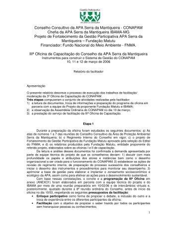 Relatório III Oficina de Conselheiros. - Fundação Matutu