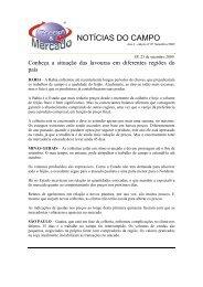 NOTÍCIAS DO CAMPO - Negócios & Mercado