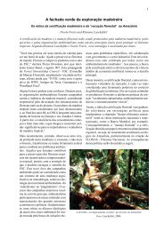 A fachada verde da exploração da Amazônia - World Rainforest ...