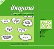Descargar en formato PDF - IBUGANA:: Boletín del Instituto de ...