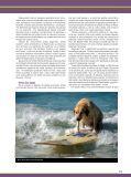 Aventura animal - Page 2