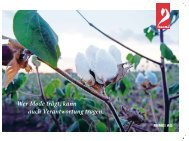 bioRe Flyer - Remei AG