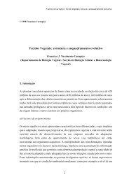 Tecidos Vegetais: estrutura e enquadramento evolutivo