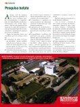 100anos - Associação Brasileira da Batata (ABBA) - Page 4