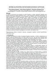 sistema silvipastoril em pastagens naturais e artificiais - Embrapa ...