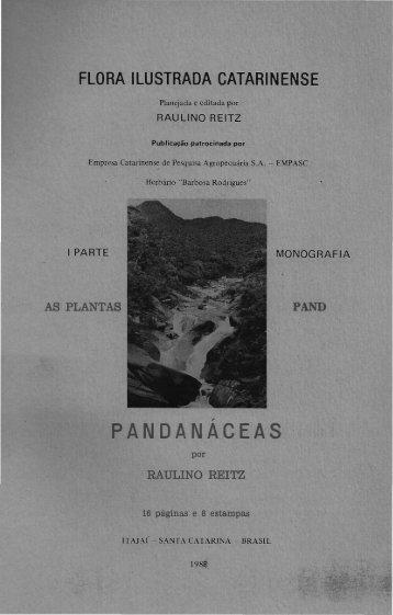 """Pandanáceas - Herbário """"Barbosa Rodrigues"""""""
