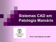 Sistemas CAD em Patologia Mamária - Faculdade de Engenharia ...