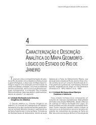 CARACTERIZAÇÃO E DESCRIÇÃO ANALÍTICA DO MAPA ... - CPRM