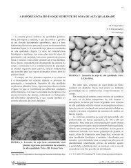 a importância do uso de semente de soja de alta qualidade - Abrates
