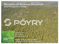 Pöyry - Gabriel Sousa - Centro Pinus