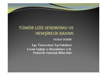 Tümör Lizis Sendromu