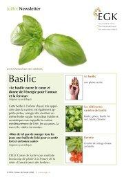 Les différentes variétés de basilic