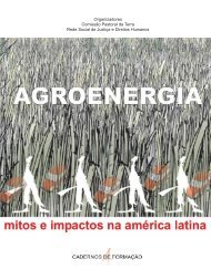 Agroenergia: Mitos e impactos na América Latina - Rede Social de ...