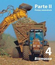 4 Biomassa - Aneel