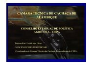 CT Cachaça de Alambique - Portal Conselhos MG