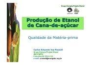 Produção de Etanol de Cana-de-açúcar Carlos Eduardo Vaz ...