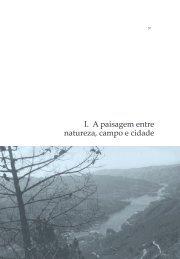 I. A paisagem entre natureza, campo e cidade