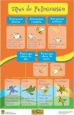 Ver exposición Polinizadores: Bichos que alimentan al ... - Dodoac.org - Page 3