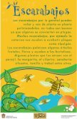 Ver exposición Polinizadores: Bichos que alimentan al ... - Dodoac.org - Page 7