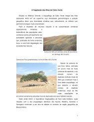 A Vegetação das Ilhas de Cabo Verde - IICT