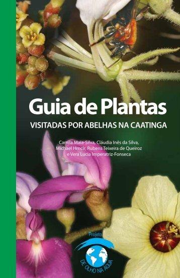 Guia de plantas visitadas por abelhas na caatinga - Ministério do ...