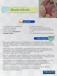 Vizualize em seu navegador - Trisanti - Page 7