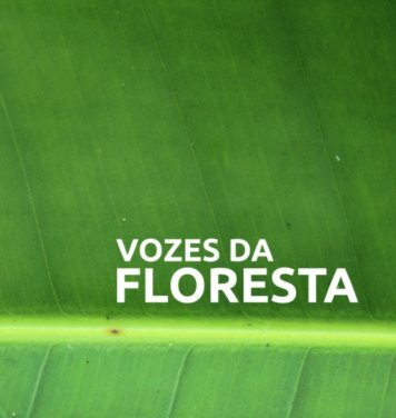 Vozes da Floresta