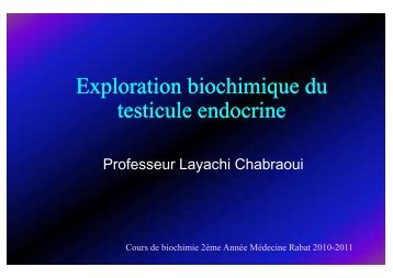 Exploration biochimique du testicule endocrine