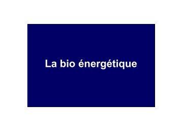 La bio énergétique