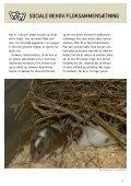 SÅDAN PASSER DU DIN MUS - Dyrenes Beskyttelse - Page 3
