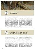 SÅDAN PASSER DU DIN MUS - Dyrenes Beskyttelse - Page 6