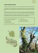 18 árbores - Medio Rural - Page 4