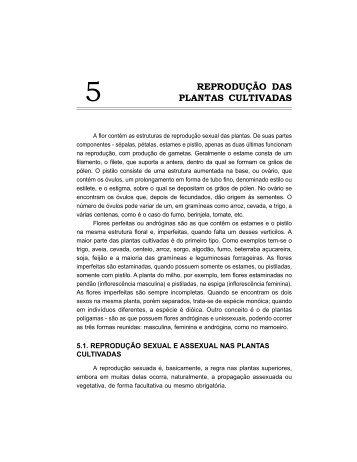 Capítulo 5 - DAG - Departamento de Agricultura ( UFLA )