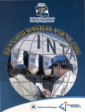 Plan operativo anual 2006