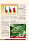 Estratégias de manejo contra as lagartas ... - Grupo Cultivar - Page 3