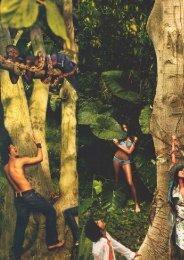 Moda-instalação: corpo, subjetivação e consumo - ethos