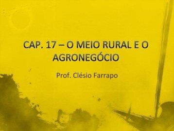 O meio rural e o agronegócio.pdf - Webnode