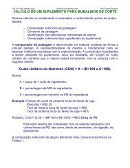 CLCULO DE UM SUPLEMENTO - Unesp