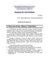 Outras pragas - Universidade Federal do Paraná
