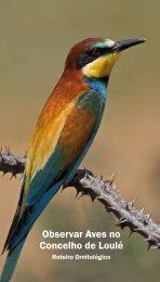 Observar Aves no Concelho de Loulé - Câmara Municipal de Loulé