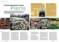 T&L De Nederlandse Planten Collectie Pieris 4 ... - Tuin & Landschap