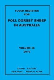 poll dorset sheep in australia - Australian Poll Dorset Association Inc