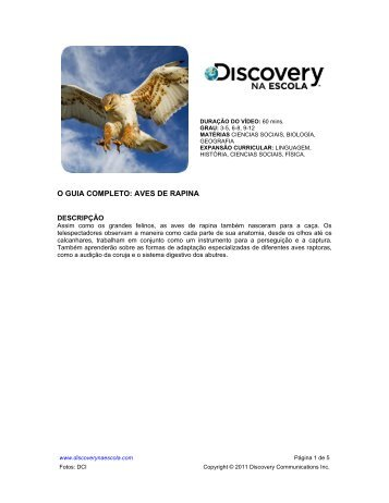 O GUIA COMPLETO: AVES DE RAPINA - Discovery na Escola