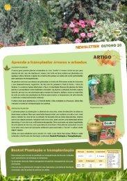 Newsletter CEJ - Outono 2010 - Atlanlusi