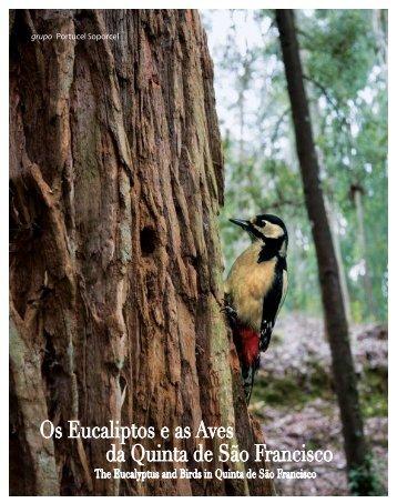 Os Eucaliptos e as Aves da Quinta de São Francisco