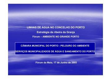 Linhas de Água no Concelho do Porto