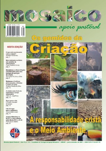 Mosaico Apoio Pastoral - Portal da Metodista